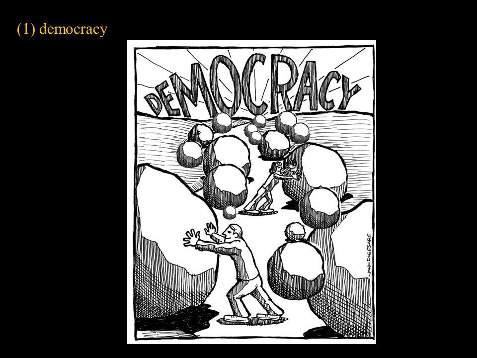 (1) democracy