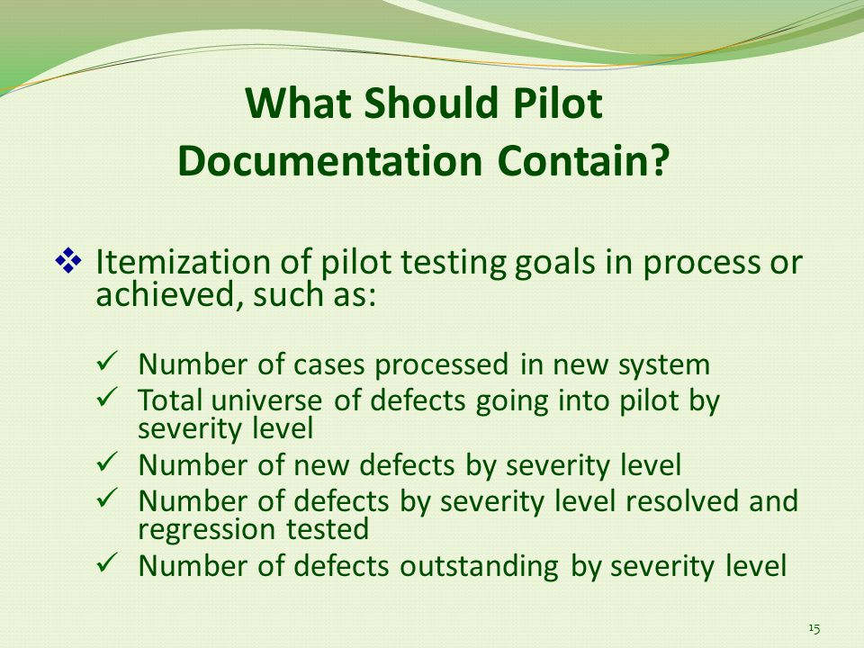 What Should Pilot Documentation Contain.