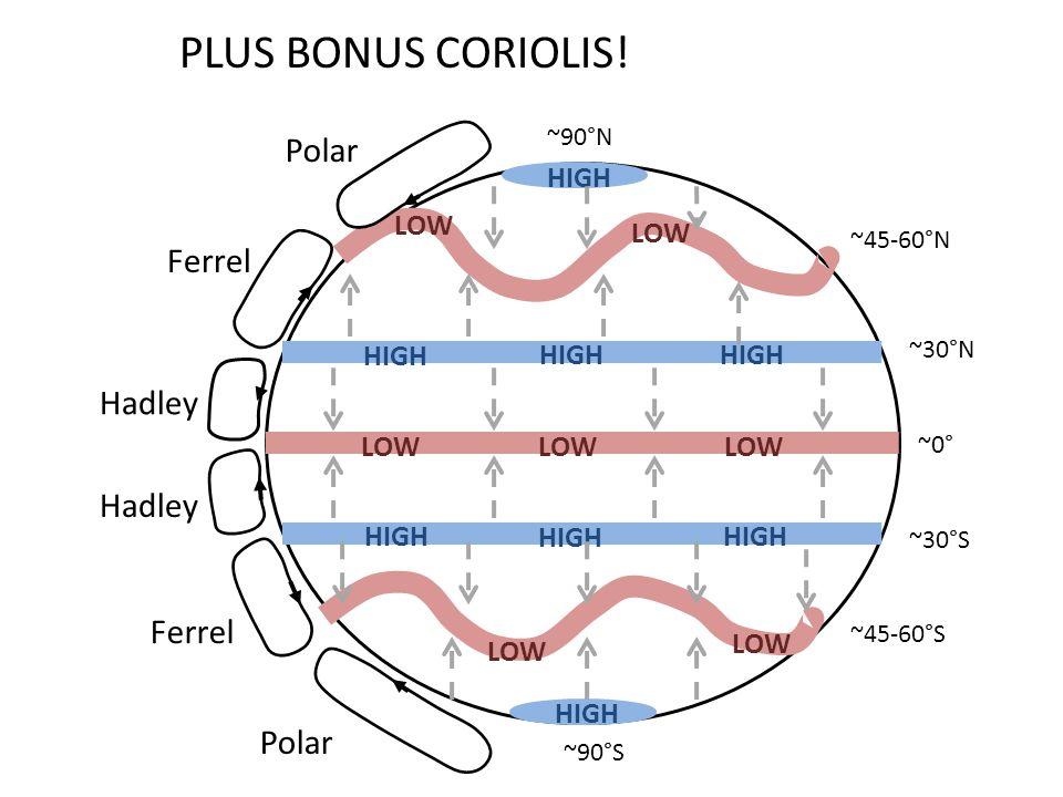LOW HIGH ~0° ~30°S ~30°N ~45-60°S ~45-60°N ~90°S ~90°N Polar Ferrel Hadley PLUS BONUS CORIOLIS!