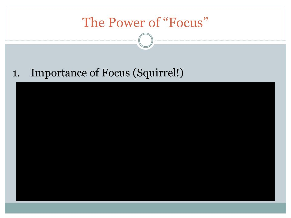 The Power of Focus 1. Importance of Focus (Squirrel!)