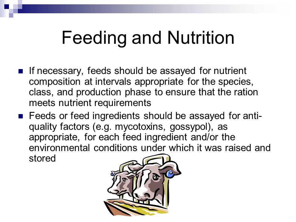 If necessary, feeds should be assayed for nutrient composition at intervals appropriate for the species, class, and production phase to ensure that the ration meets nutrient requirements Feeds or feed ingredients should be assayed for anti- quality factors (e.g.
