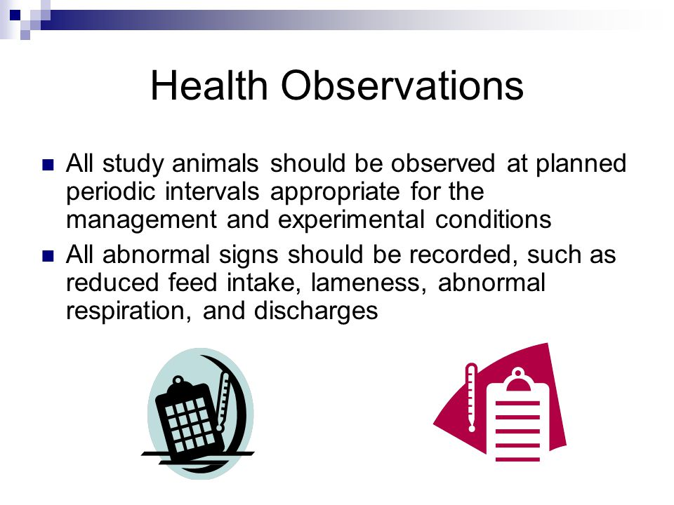 All study animals should be observed at planned periodic intervals appropriate for the management and experimental conditions All abnormal signs should be recorded, such as reduced feed intake, lameness, abnormal respiration, and discharges Health Observations