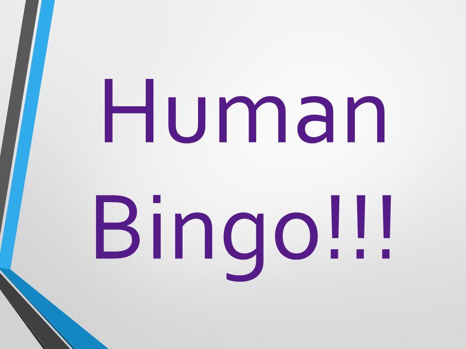 Human Bingo!!!