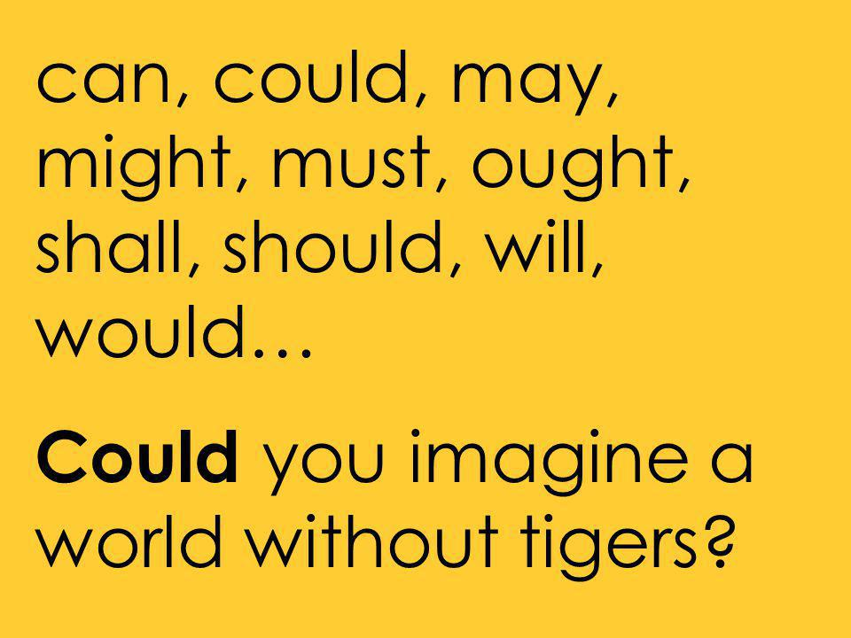 can, could, may, might, must, ought, shall, should, will, would… Could you imagine a world without tigers