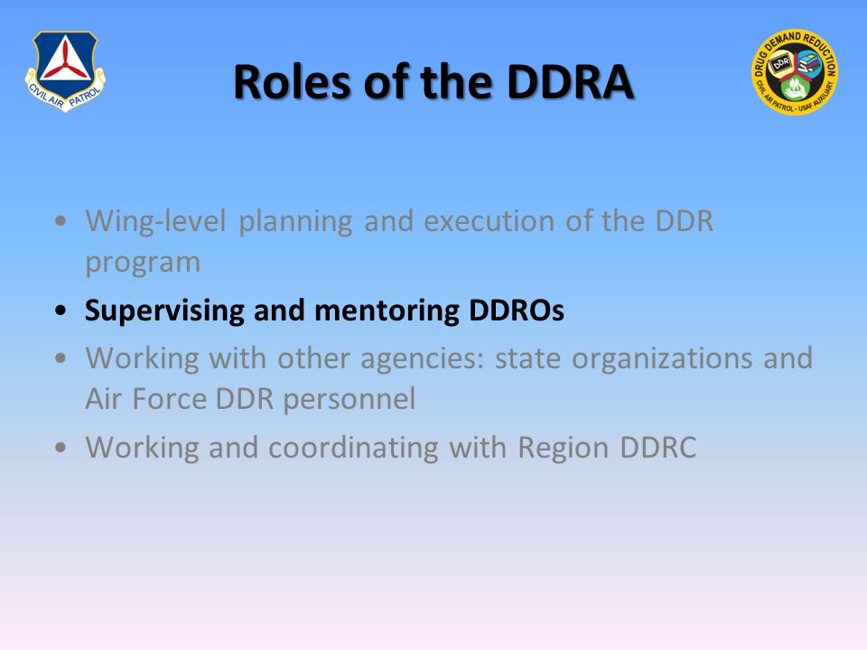Roles of the DDRA Wing-level planning and execution of the DDR program Supervising and mentoring DDROs Working with other agencies: state organization
