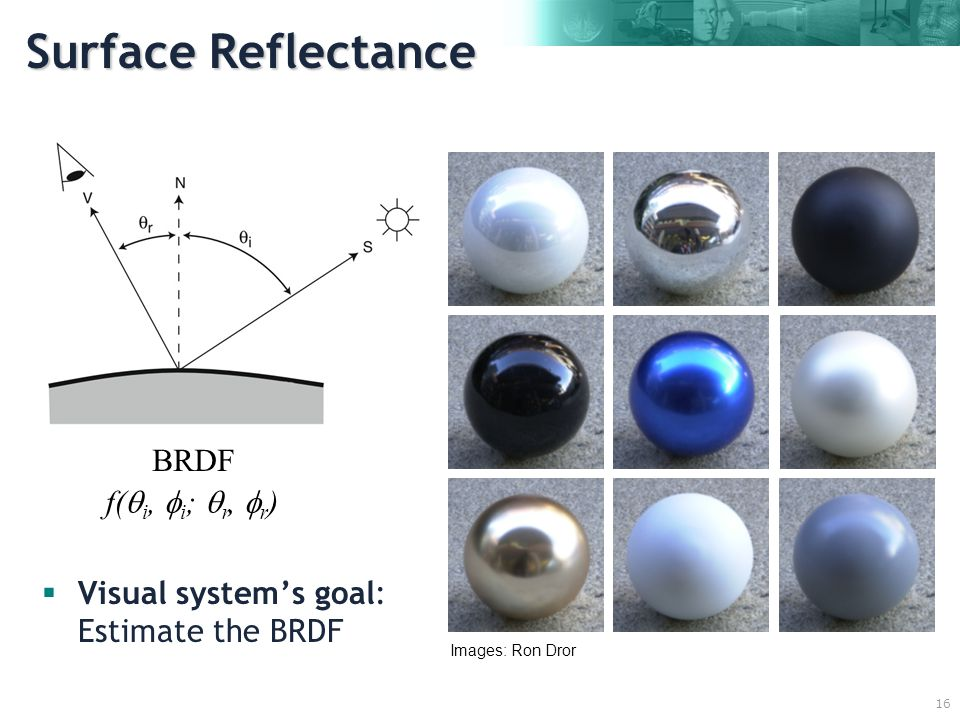 16 Surface Reflectance  Visual system's goal: Estimate the BRDF f(  i,  i ;  r,  r ) BRDF Images: Ron Dror