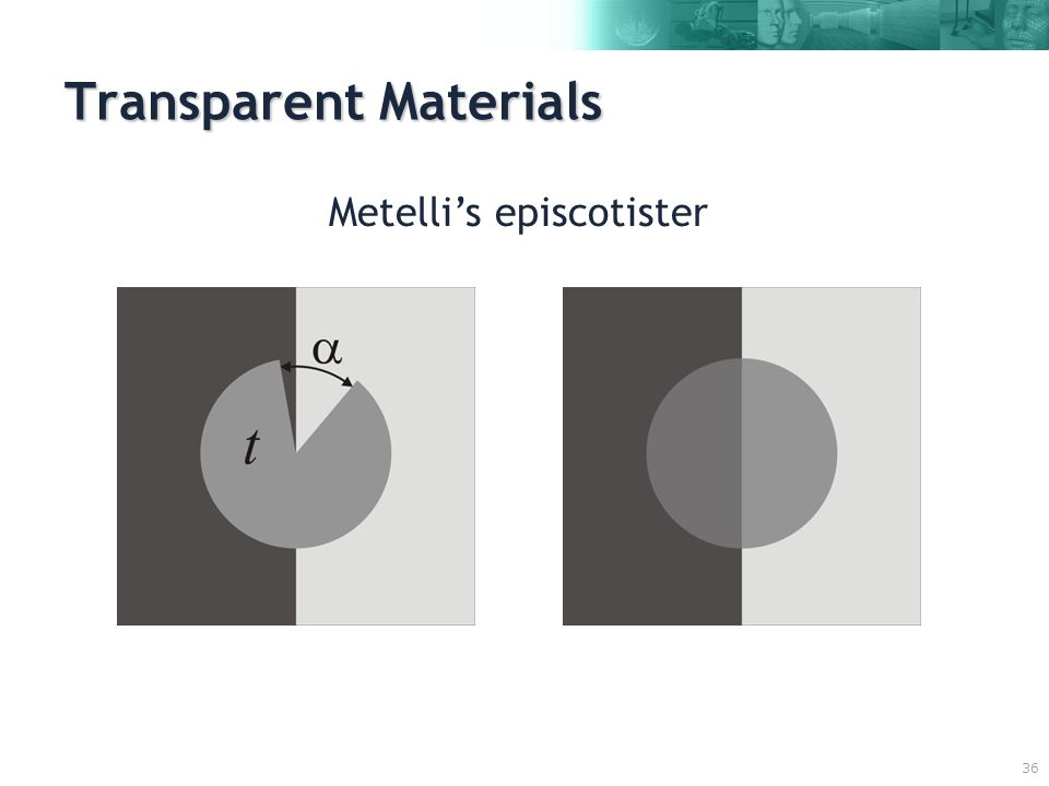 36 Transparent Materials Metelli's episcotister