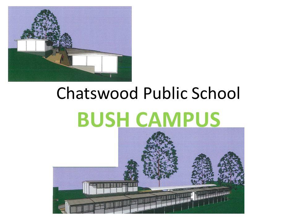 Chatswood Public School BUSH CAMPUS