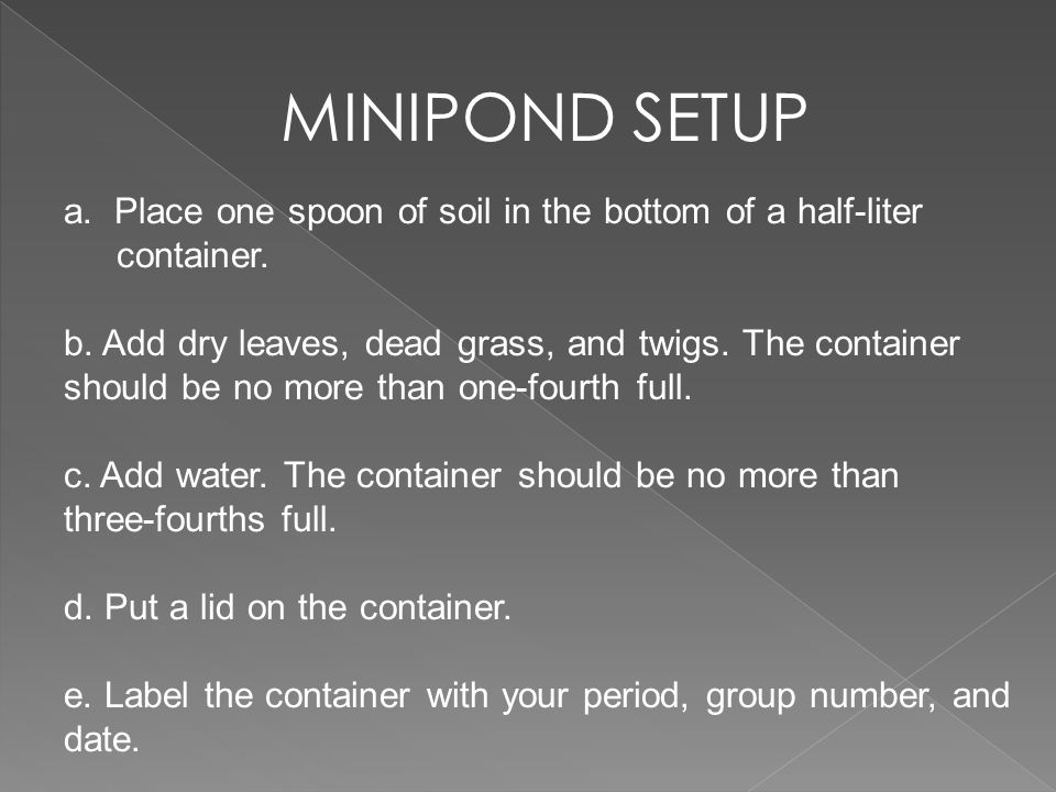 MINIPOND SETUP a. Place one spoon of soil in the bottom of a half-liter container. b. Add dry leaves, dead grass, and twigs. The container should be n