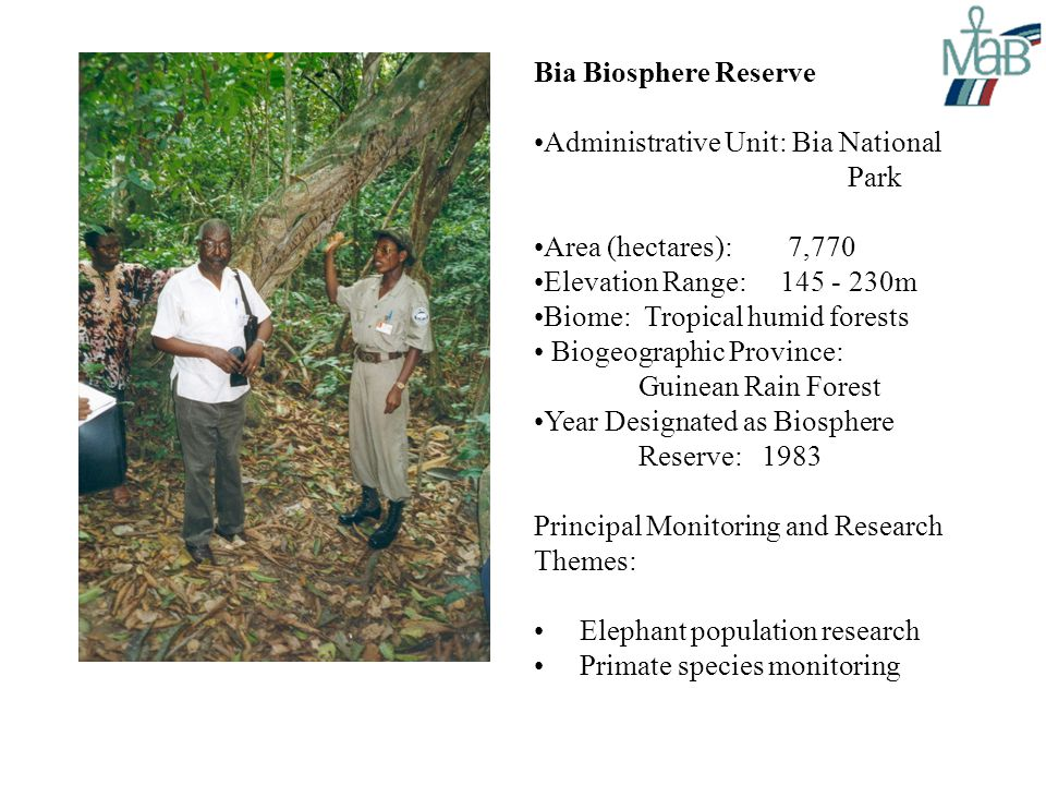 Bia Biosphere Reserve Administrative Unit: Bia National Park Area (hectares): 7,770 Elevation Range: 145 - 230m Biome: Tropical humid forests Biogeographic Province: Guinean Rain Forest Year Designated as Biosphere Reserve: 1983 Principal Monitoring and Research Themes: Elephant population research Primate species monitoring