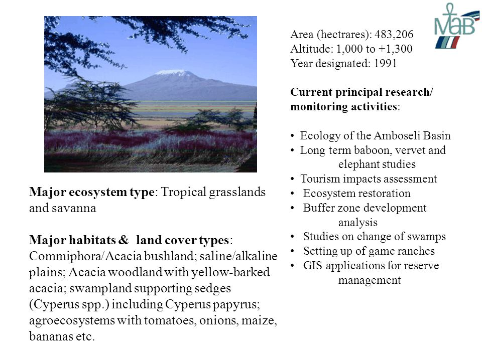 Area (hectrares): 483,206 Altitude: 1,000 to +1,300 Year designated: 1991 Current principal research/ monitoring activities: Ecology of the Amboseli Basin Long term baboon, vervet and elephant studies Tourism impacts assessment Ecosystem restoration Buffer zone development analysis Studies on change of swamps Setting up of game ranches GIS applications for reserve management Major ecosystem type: Tropical grasslands and savanna Major habitats & land cover types: Commiphora/Acacia bushland; saline/alkaline plains; Acacia woodland with yellow-barked acacia; swampland supporting sedges (Cyperus spp.) including Cyperus papyrus; agroecosystems with tomatoes, onions, maize, bananas etc.