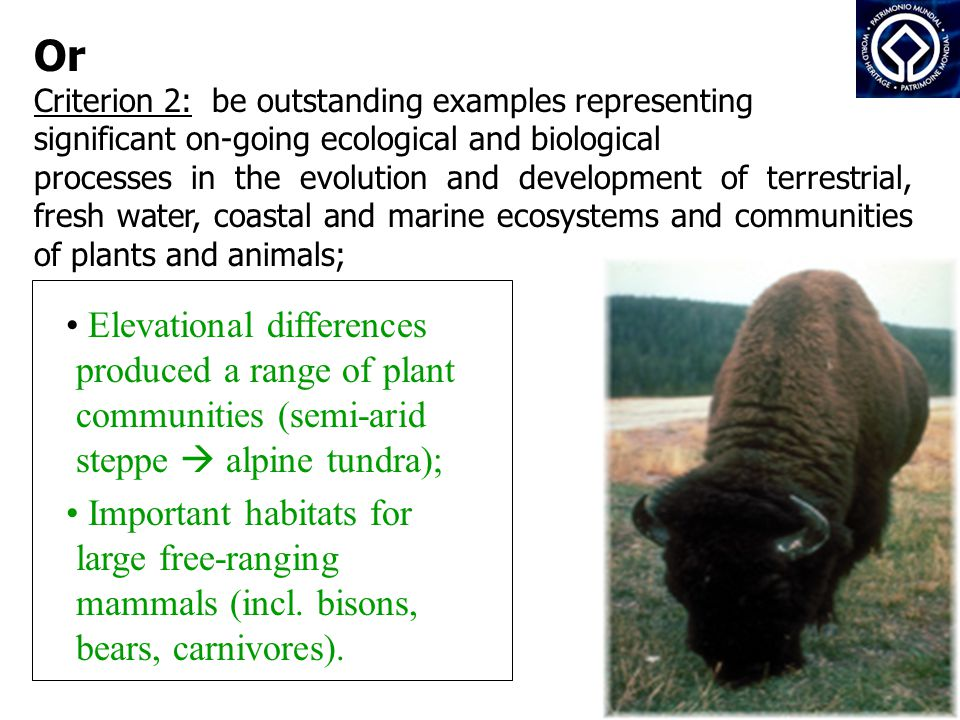 Or Criterion 2: be outstanding examples representing significant on-going ecological and biological processes in the evolution and development of terrestrial, fresh water, coastal and marine ecosystems and communities of plants and animals; Elevational differences produced a range of plant communities (semi-arid steppe  alpine tundra); Important habitats for large free-ranging mammals (incl.