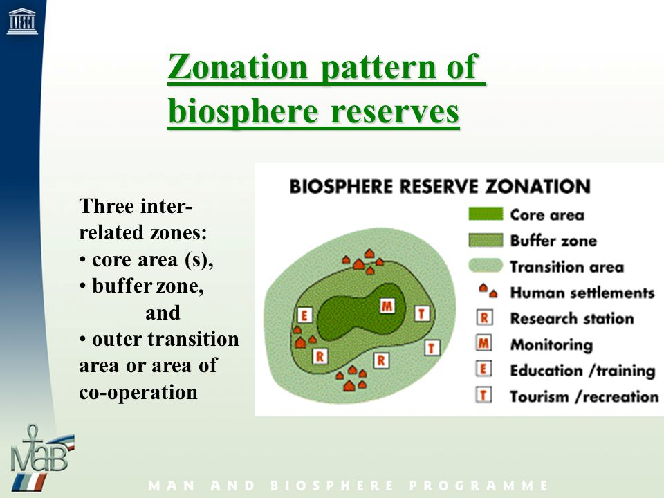 Formally recognised by 188 Member States of UNESCO Tool for conservation of biodiversity and sustainable use of biological resources (thus contributing to the CBD and the UNCCD) To-date: 425 biosphere reserves in 95 countries 30 new nominations received in 2002 (of which 18 were approved) The World Network of Biosphere Reserves