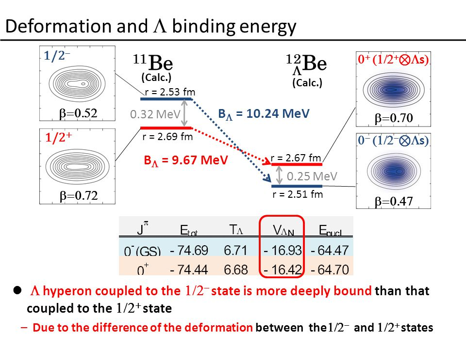 Deformation and  binding energy  hyperon coupled to the   state is more deeply bound than that coupled to the   state –Due to the difference of the deformation between the   and   states B  = 10.24 MeV B  = 9.67 MeV 0.32 MeV 0.25 MeV 1/2 +  1/2         ⊗  s      ⊗  s  11 Be (Calc.) 12 Be (Calc.)  r = 2.53 fm r = 2.69 fm r = 2.67 fm r = 2.51 fm