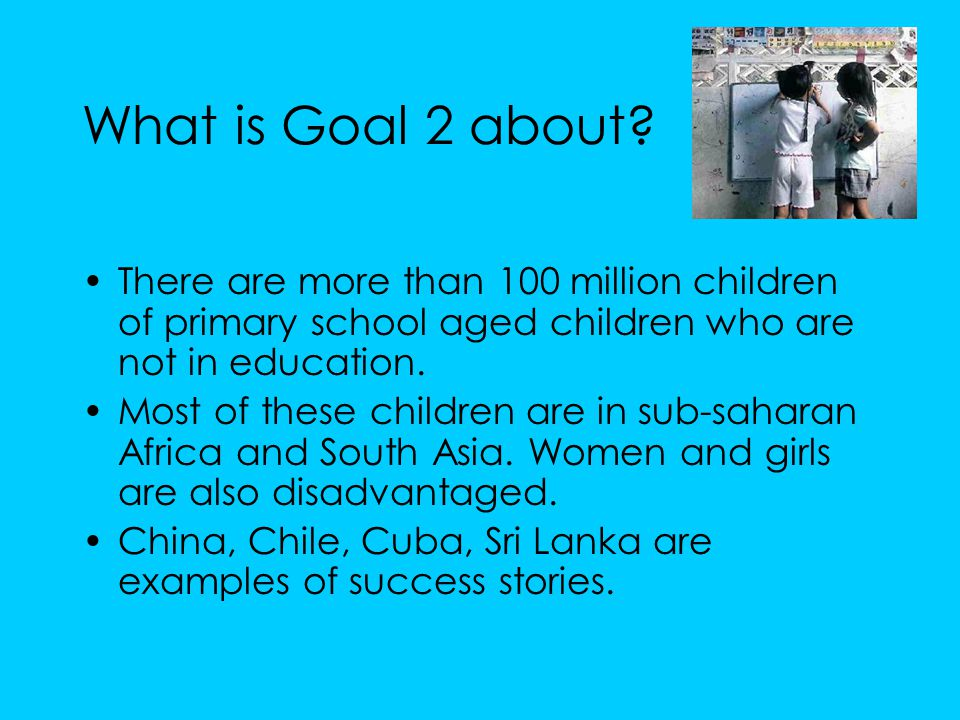 What is Goal 2 about.
