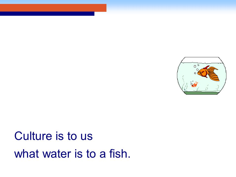 Culture is to us what water is to a fish.