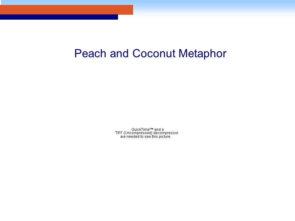 Peach and Coconut Metaphor