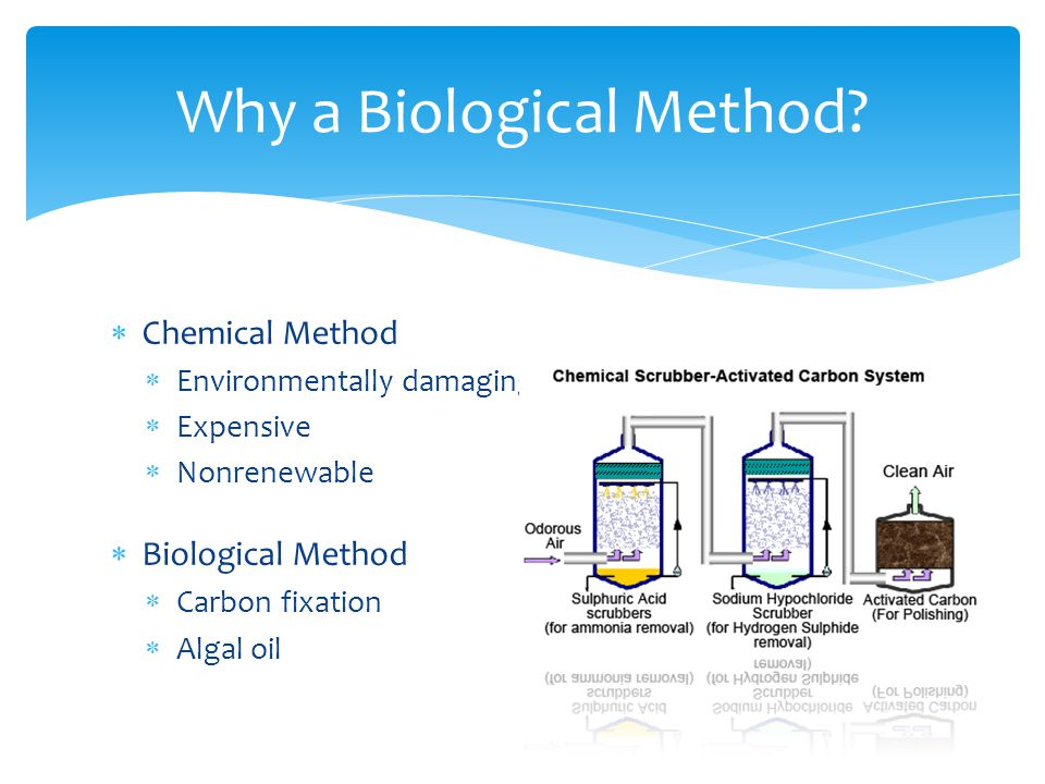  What are the differences in concentrations of methane and CO2 before and after purification of raw biogas.