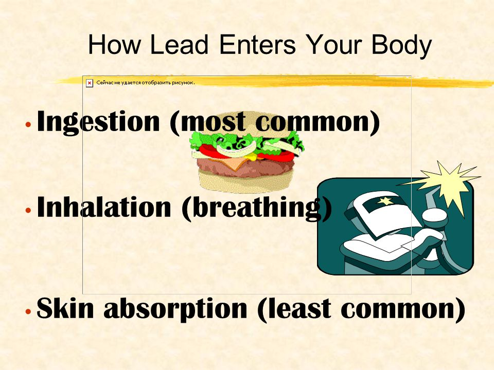 How Lead Enters Your Body Ingestion (most common) Inhalation (breathing) Skin absorption (least common)