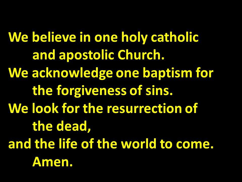 We believe in one holy catholic and apostolic Church.