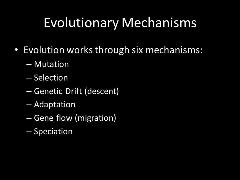 Evolutionary Mechanisms Evolution works through six mechanisms: – Mutation – Selection – Genetic Drift (descent) – Adaptation – Gene flow (migration) – Speciation