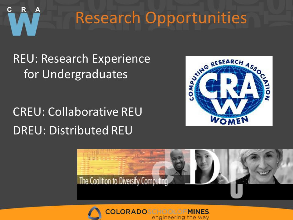 Research Opportunities REU: Research Experience for Undergraduates CREU: Collaborative REU DREU: Distributed REU