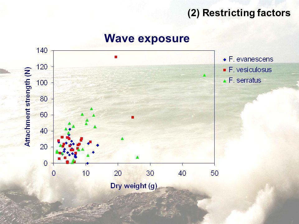 Wave exposure (2) Restricting factors