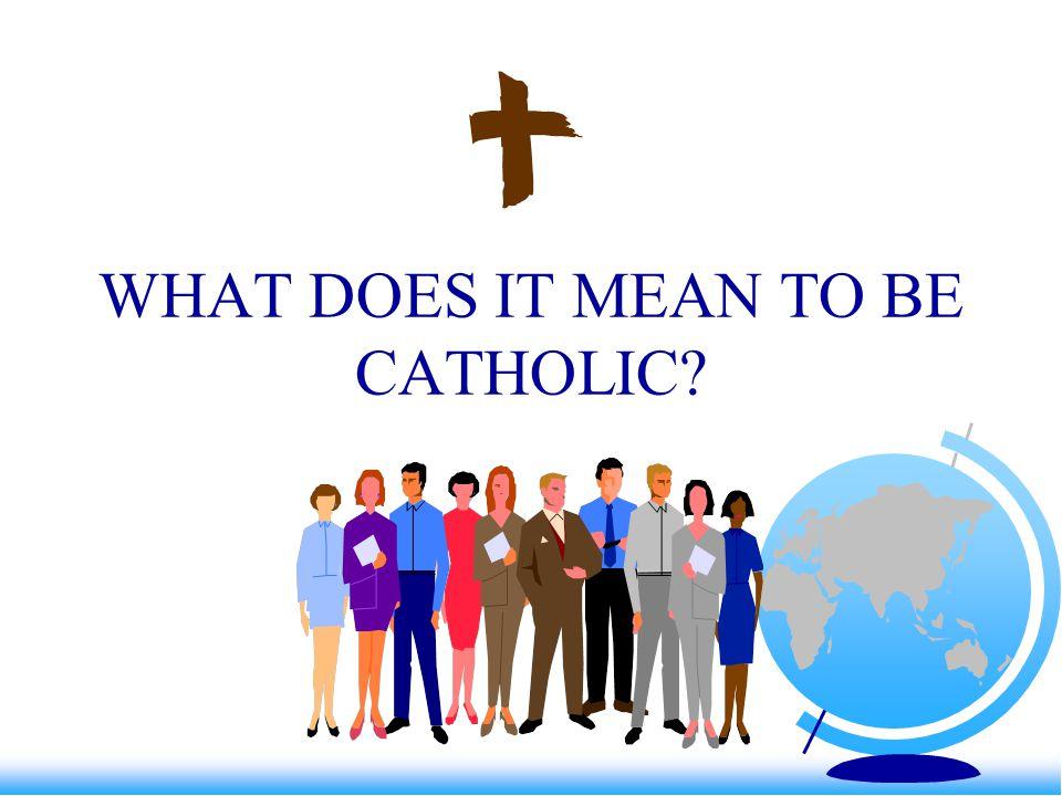 Elements of Catholic Identity Catholic Leadership Religious Education Worship Faith Development Witness/Service Faith Community Total Person/Student Philosophy Tradition Parental Involvement
