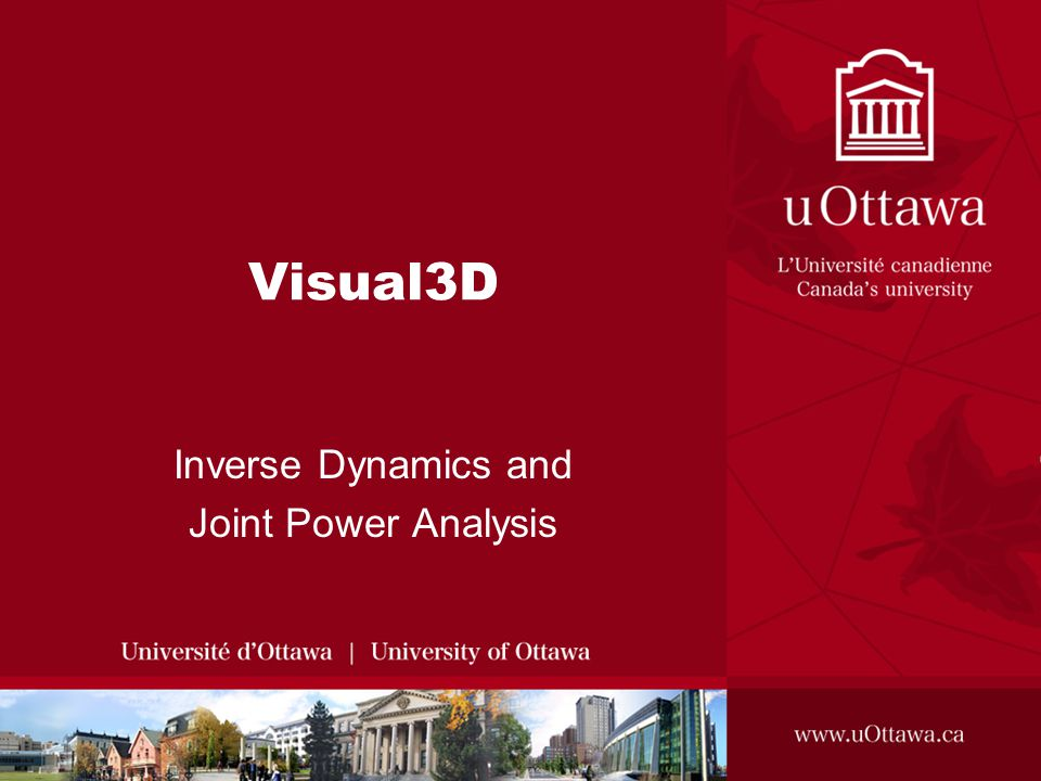Visual3D Inverse Dynamics and Joint Power Analysis