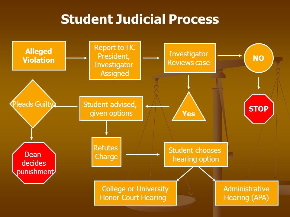 Alleged Violation Report to HC President, Investigator Assigned Investigator Reviews case NO STOP Yes Student advised, given options Pleads Guilty Dean decides punishment Refutes Charge Student chooses hearing option Student Judicial Process College or University Honor Court Hearing Administrative Hearing (APA)