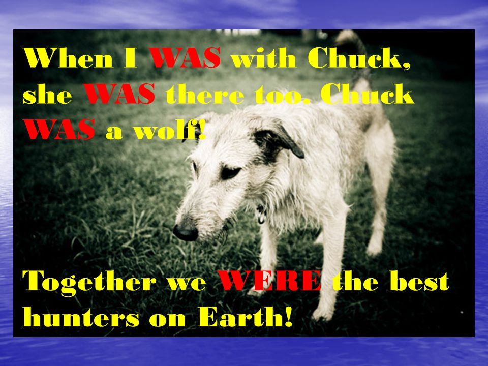When I WAS with Chuck, she WAS there too. Chuck WAS a wolf.