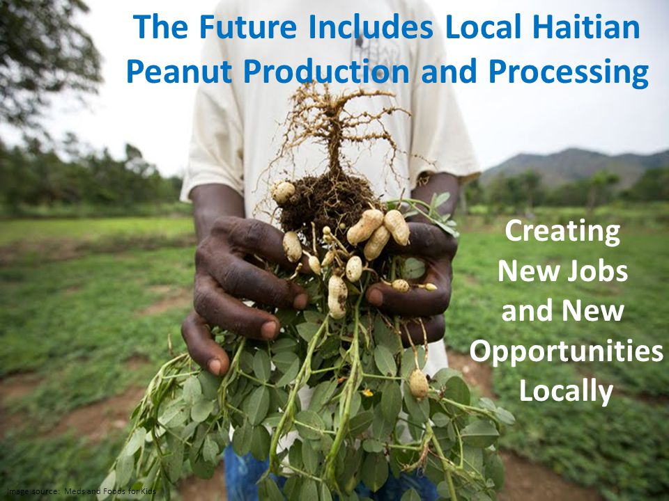 Ready to Use Therapuetic Supplement The Future Includes Local Haitian Peanut Production and Processing Creating New Jobs and New Opportunities Locally Image source: Meds and Foods for Kids