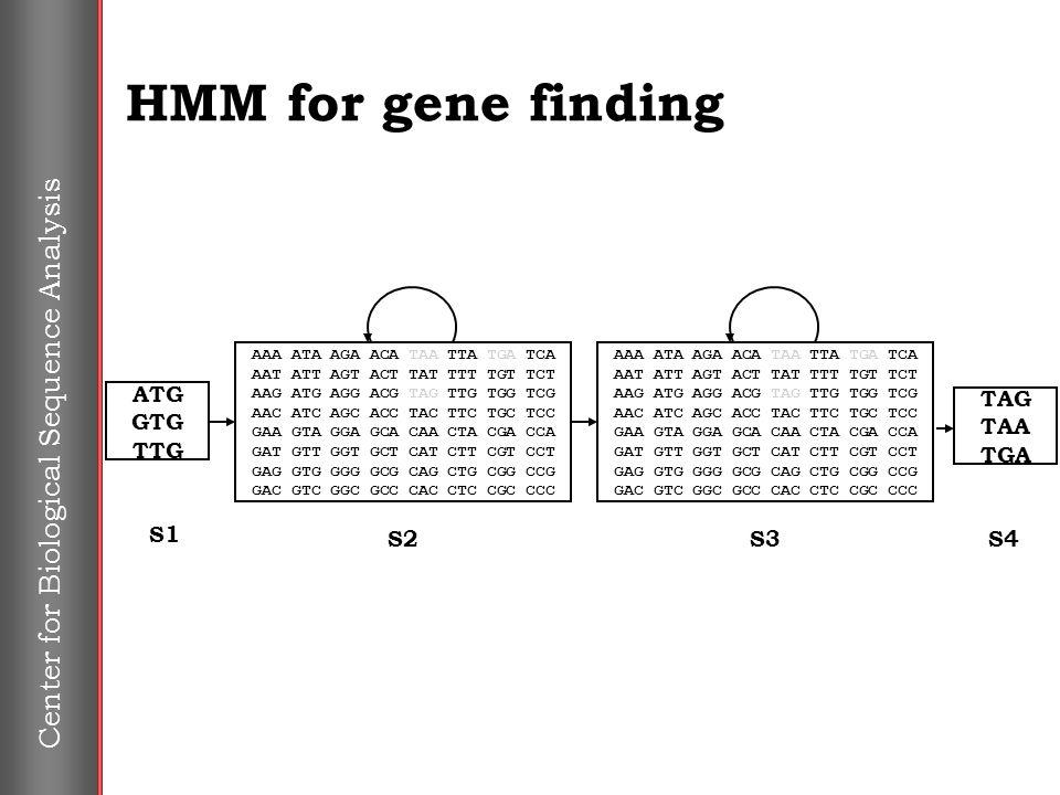 Center for Biological Sequence Analysis HMM for gene finding TAG TAA TGA S4S3 AAA ATA AGA ACA TAA TTA TGA TCA AAT ATT AGT ACT TAT TTT TGT TCT AAG ATG AGG ACG TAG TTG TGG TCG AAC ATC AGC ACC TAC TTC TGC TCC GAA GTA GGA GCA CAA CTA CGA CCA GAT GTT GGT GCT CAT CTT CGT CCT GAG GTG GGG GCG CAG CTG CGG CCG GAC GTC GGC GCC CAC CTC CGC CCC ATG GTG TTG S1 S2 AAA ATA AGA ACA TAA TTA TGA TCA AAT ATT AGT ACT TAT TTT TGT TCT AAG ATG AGG ACG TAG TTG TGG TCG AAC ATC AGC ACC TAC TTC TGC TCC GAA GTA GGA GCA CAA CTA CGA CCA GAT GTT GGT GCT CAT CTT CGT CCT GAG GTG GGG GCG CAG CTG CGG CCG GAC GTC GGC GCC CAC CTC CGC CCC