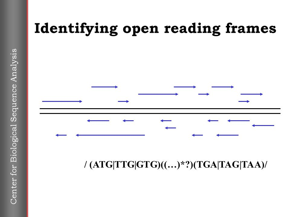 Center for Biological Sequence Analysis Identifying open reading frames / (ATG|TTG|GTG)((…)*?)(TGA|TAG|TAA)/