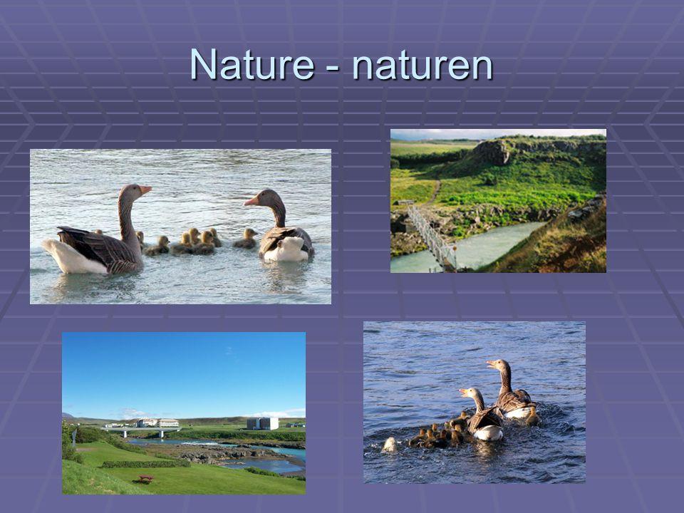Nature - naturen