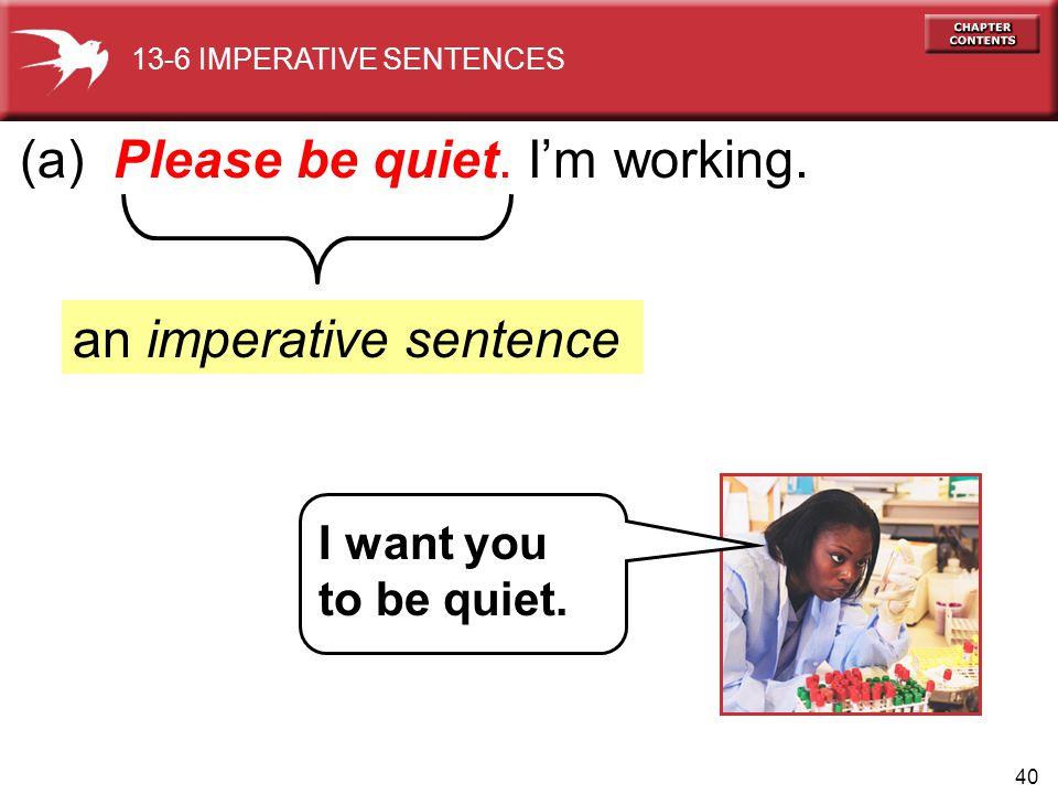 40 (a) Please be quiet. I'm working. an imperative sentence 13-6 IMPERATIVE SENTENCES I want you to be quiet.