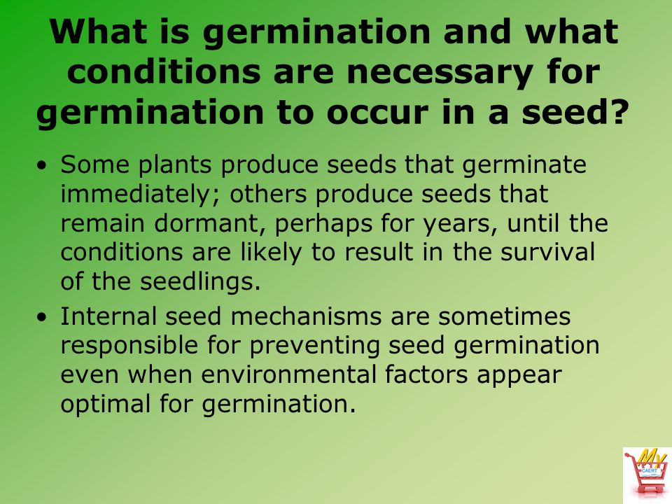 What is germination and what conditions are necessary for germination to occur in a seed? Some plants produce seeds that germinate immediately; others