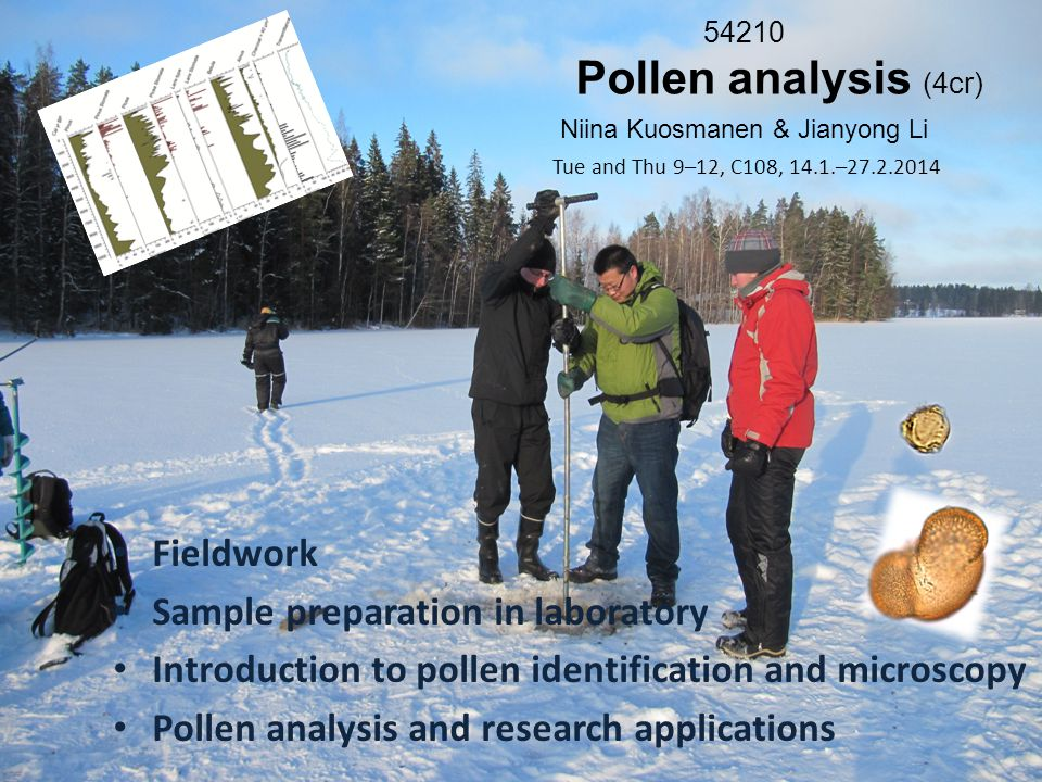 54210 Pollen analysis (4cr) Niina Kuosmanen & Jianyong Li Fieldwork Sample preparation in laboratory Introduction to pollen identification and microscopy Pollen analysis and research applications Tue and Thu 9–12, C108, 14.1.–27.2.2014