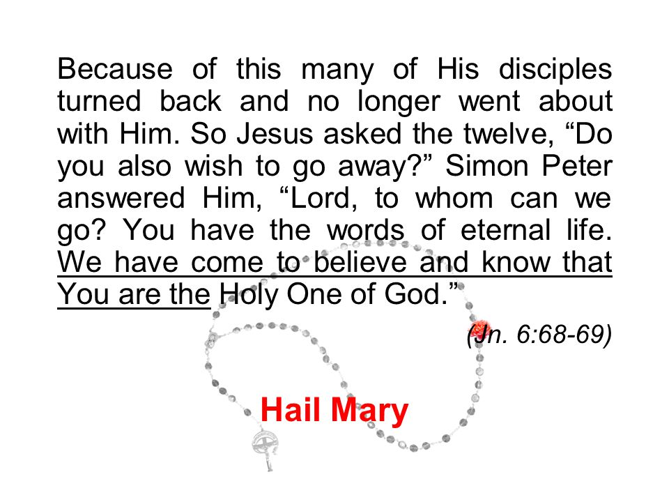 """Because of this many of His disciples turned back and no longer went about with Him. So Jesus asked the twelve, """"Do you also wish to go away?"""" Simon P"""