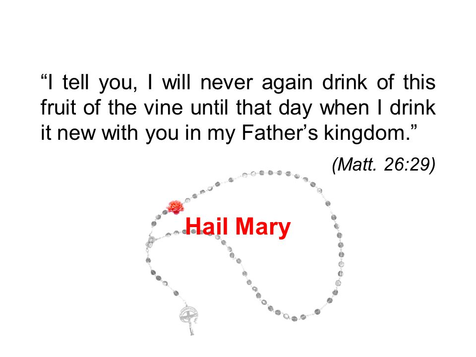 """""""I tell you, I will never again drink of this fruit of the vine until that day when I drink it new with you in my Father's kingdom."""" (Matt. 26:29) Hai"""