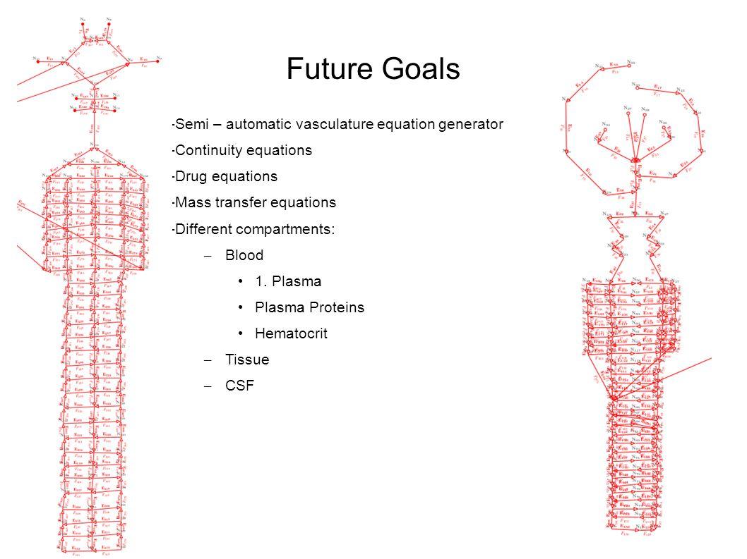 Future Goals -Semi – automatic vasculature equation generator -Continuity equations -Drug equations -Mass transfer equations -Different compartments: – Blood 1.