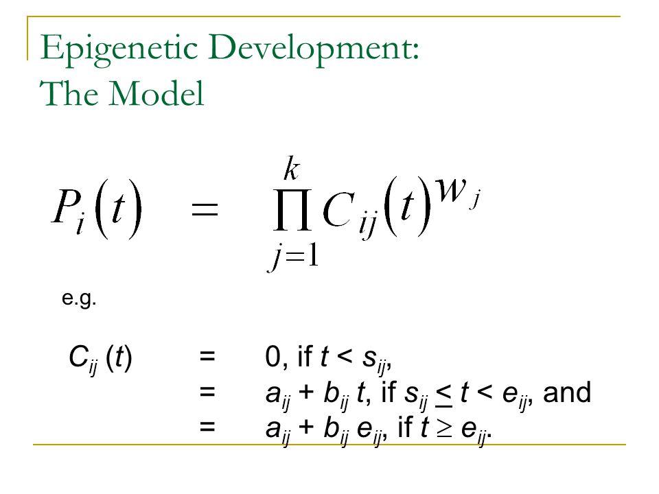 Epigenetic Development: The Model C ij (t) = 0, if t < s ij, = a ij + b ij t, if s ij < t < e ij, and = a ij + b ij e ij, if t  e ij. e.g.