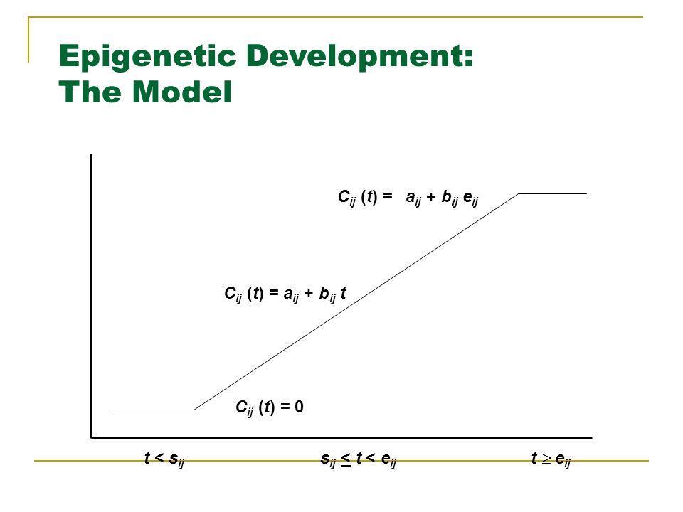 C ij (t) = 0 C ij (t) = a ij + b ij e ij C ij (t) = a ij + b ij t t < s ij s ij < t < e ij t  e ij Epigenetic Development: The Model