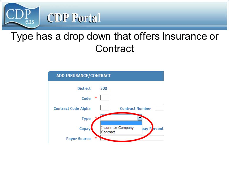 Type has a drop down that offers Insurance or Contract