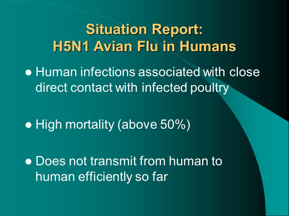 Situation Report: H5N1 Avian Flu in Humans Human infections associated with close direct contact with infected poultry High mortality (above 50%) Does not transmit from human to human efficiently so far