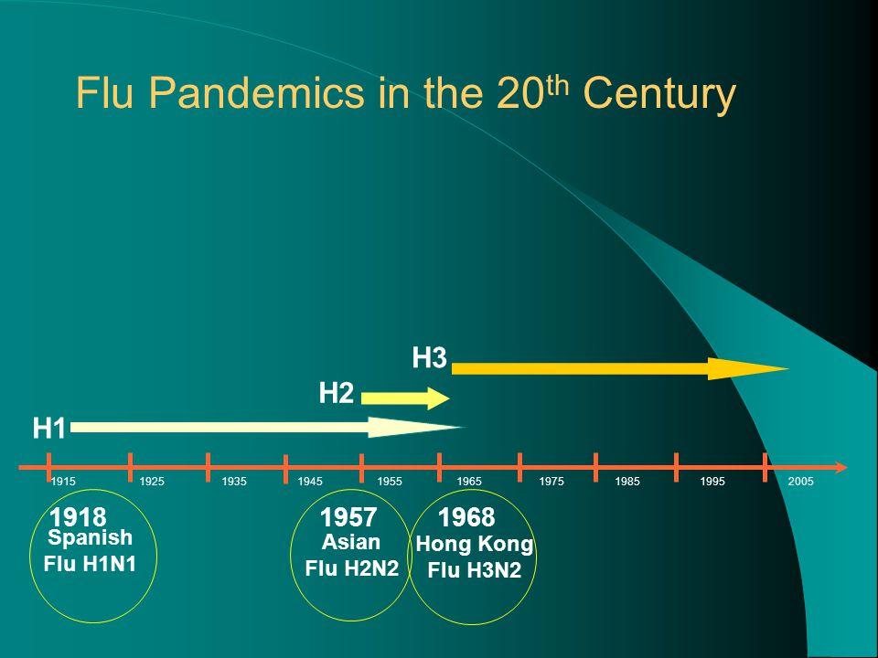 H1 H3 H2 1918 Spanish Flu H1N1 1957 Asian Flu H2N2 1968 Hong Kong Flu H3N2 1915 1925 1935 1945 1955 1965 1975 1985 1995 2005 Flu Pandemics in the 20 th Century