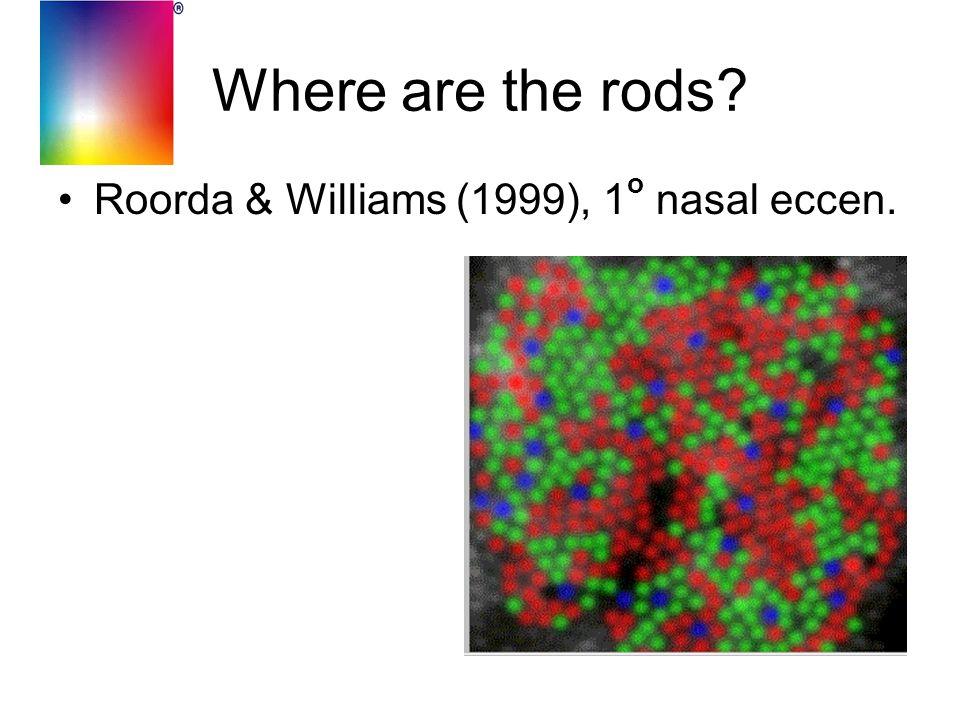 Where are the rods Roorda & Williams (1999), 1 o nasal eccen.