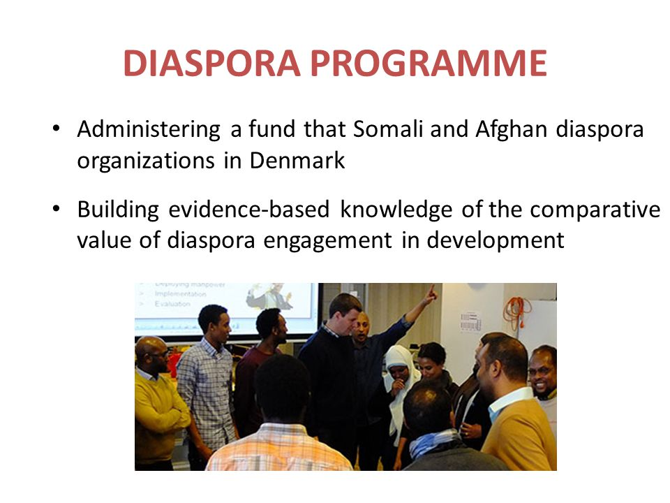 Administering a fund that Somali and Afghan diaspora organizations in Denmark Building evidence-based knowledge of the comparative value of diaspora e