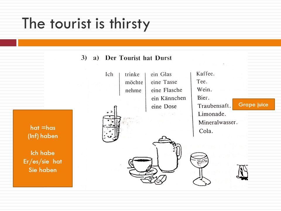 The tourist is thirsty hat =has (Inf) haben Ich habe Er/es/sie hat Sie haben Grape juice