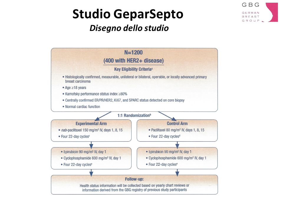Studio GeparSepto Disegno dello studio